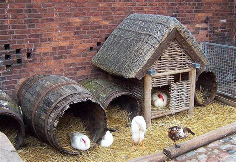 chicken house plans   woodworking projects plans