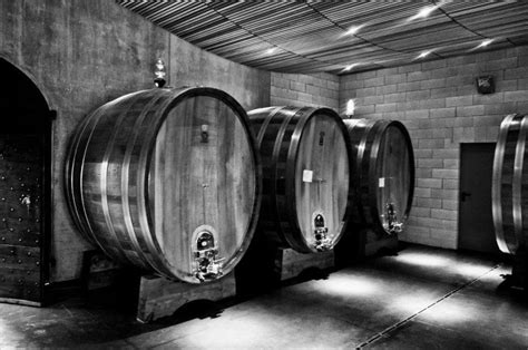 black bucks in a wine barrel room the about airlocks il palazzone
