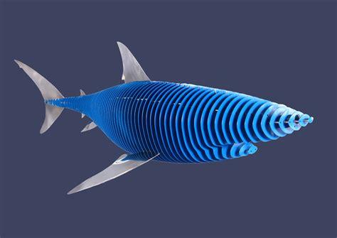 baby shark metal metal shark sculpture by ofir yadan at coroflot com