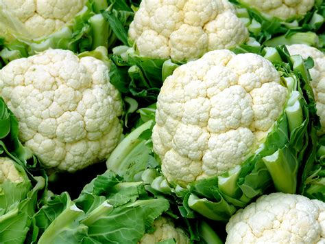 que se siembra en septiembre facilisimocom mejores 37 im 225 genes de minigu 237 as de siembra la temporada de la coliflor cocinar en casa es facilisimo
