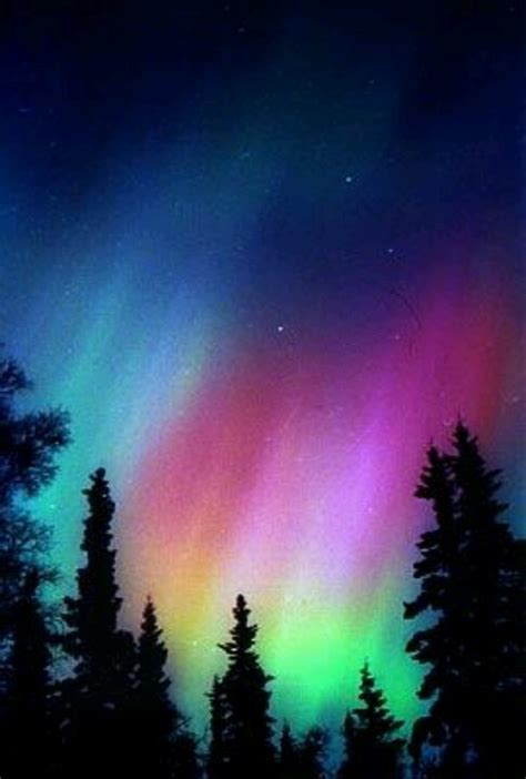 When Are The Northern Lights In Alaska by Alaskan Northern Lights World Wander N