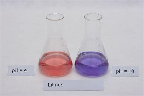 Bases Make Litmus Paper Turn - buffers indicators acids and bases 101 the basics of