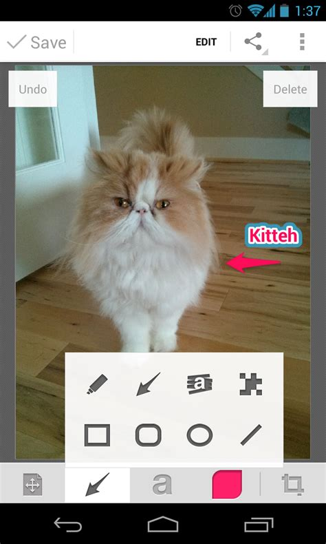 skitch for android skitch for android sees big update pen and tool enhancements droid