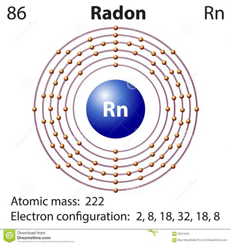 element diagram diagram representation of the element radon royalty free