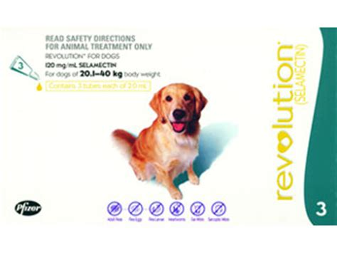revolution puppy revolution for cats and dogs vetwest animal hospitals