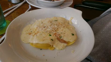 olive garden modesto cheese ravioli on asiago alfredo sauce yelp