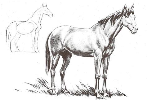 imagenes artisticas para dibujar dibujo art 237 stico caballos plantillas para pintar etc