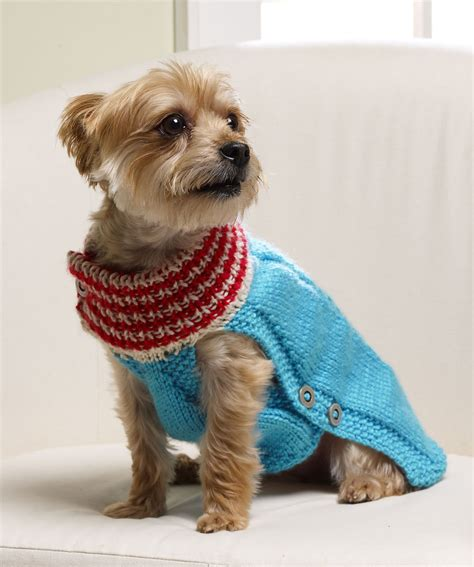sweater for dogs sweater knitting patterns breeds picture