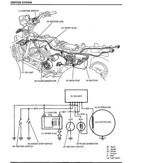 wiring diagram raptor 350 2006 get free image about