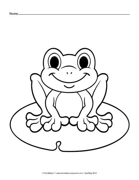 frog coloring page best 25 frog coloring pages ideas on frog