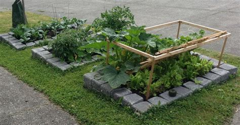 how to build a raised bed vegetable garden diy