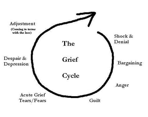 cycle of grief diagram grief and loss cycle diagram best free home design