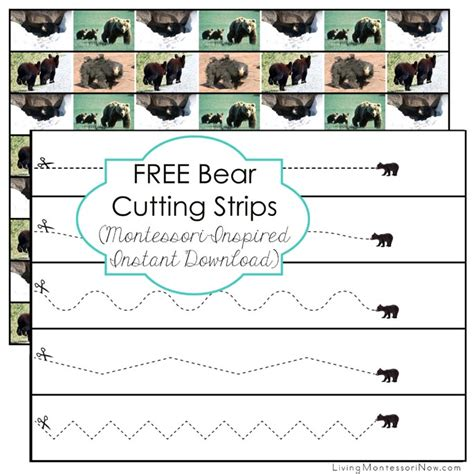 printable montessori cutting strips free bear cutting strips montessori inspired instant