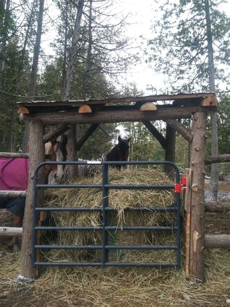 How To Make A Hay Rack For Horses by Best 25 Feeder Ideas On