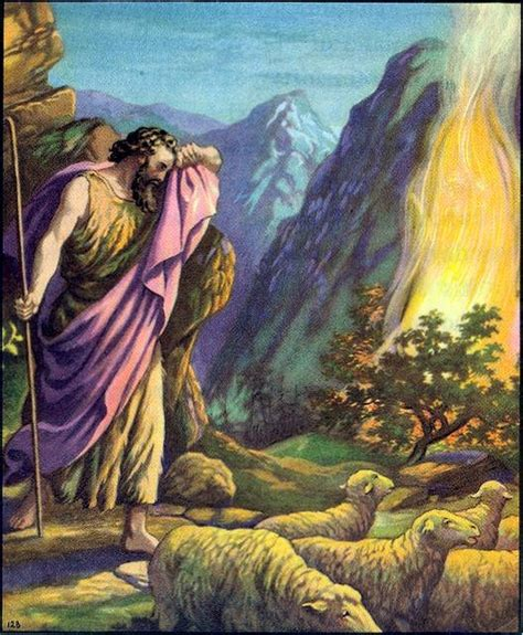 exodus biography garden of praise moses bible story