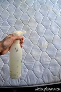 Remove Vomit Smell From Mattress by 17 Best Ideas About Urine Stains On Carpet