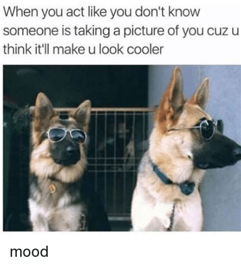 how do you know if you have mood swings 25 best memes about taking a picture taking a picture