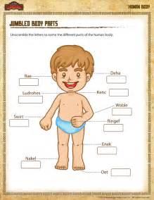 kindergarten body parts worksheet english teaching