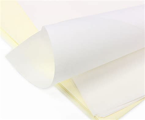 How To Make Paper See Through - are vellum paper and tracing paper the same thing