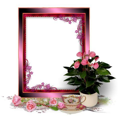 picture frame  image  pixabay