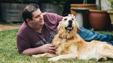 golden retriever canberra canberra golden retriever named of the year for saving owners