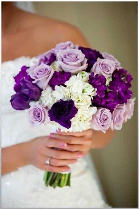 significato colore dei fiori colore glicine significato fiori glicine colore