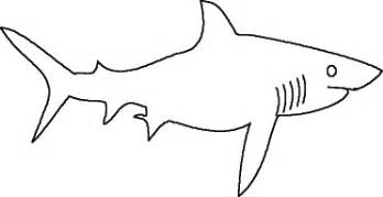 mako templates best photos of free printable shark template shark