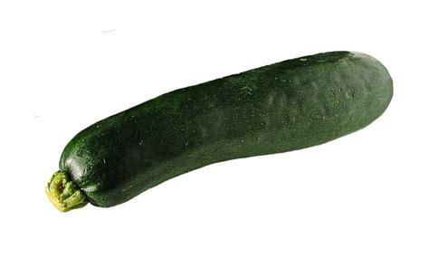 Exceptional Summer Garden Vegetables #7: Zucchini-700384_640.png