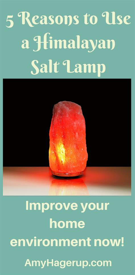 Reasons To Take Up Lomography by 5 Reasons To Use A Himalayan Salt L The Vitamin Shepherd