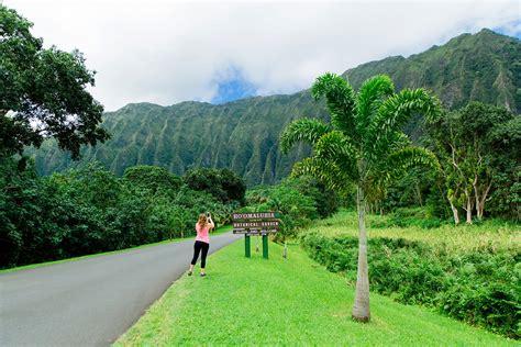 Hoomaluhia Botanical Gardens Oahu Garden Ftempo Hoomaluhia Botanical Gardens