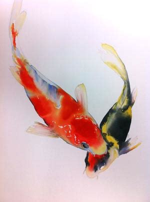 koi fish watercolor paintings lian zhen koi watercolor art inspiration pinterest