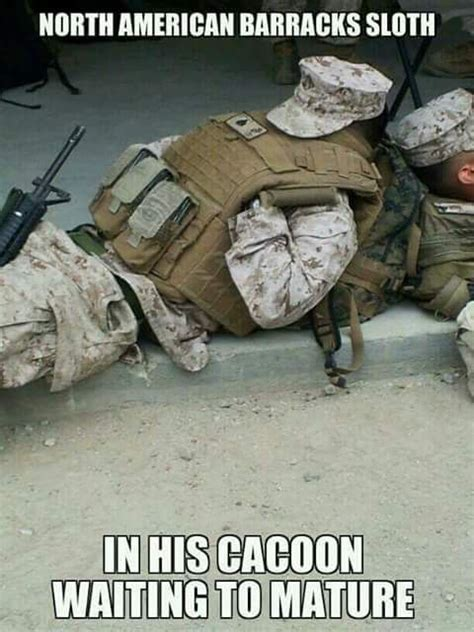 Funny Marine Corps Memes - 305 best military memes images on pinterest funny