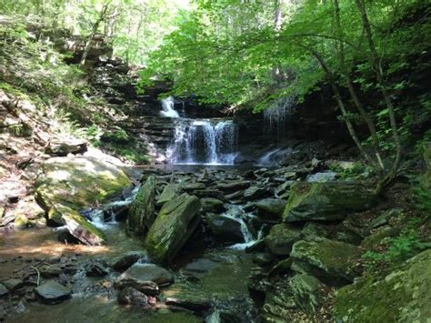 boat rentals near uniontown pa the beach and boat rentals picture of ricketts glen