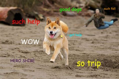 Best Doge Memes - the best of the doge meme barnorama