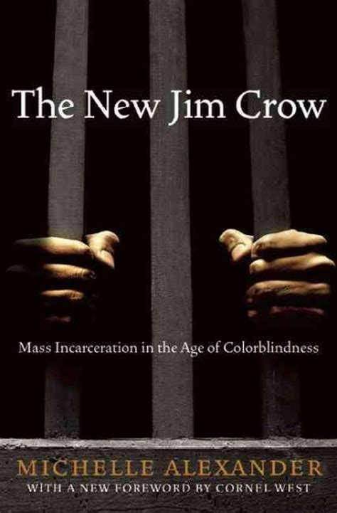 themes in the new jim crow just mercy and the new jim crow explore the complexity