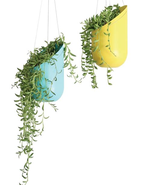 2 liter soda bottle planters could make these from painted 2 liter soda bottles