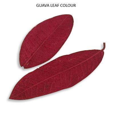 guava color guava leaves colour preserve colour wholesale suppliers