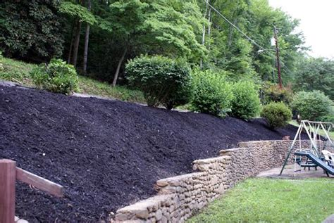 backyard hillside landscaping ideas back yard steep hillside landscaping ideas photos