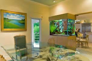 an angelfish live planted aquarium and interior live planted
