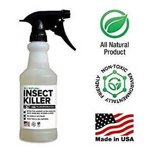 kitchen safe ant killer all non toxic insect killer spray by