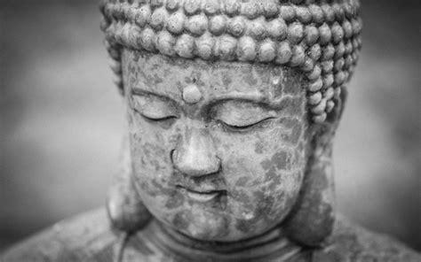 weathered buddha wallpaper photograph  terry majamaki