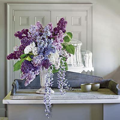 Martha Stewart Extols Her Love Of Lilacs Connecticut