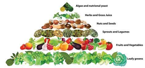 alimentos veganos la pir 225 mide nutricional de los veganos blog de farmacia