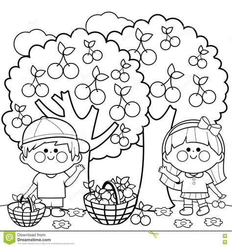 beneath black books harvesting cherries coloring book page stock vector
