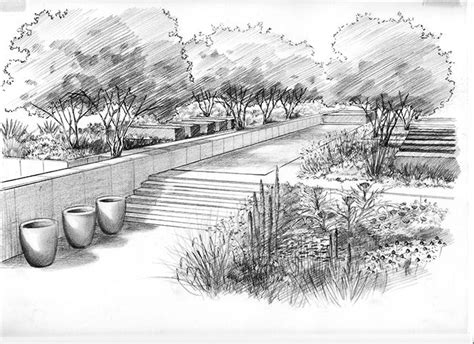 drawing of garden andy sturgeon garden design drawing sketch