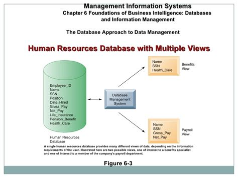 online tutorial database management system dbms