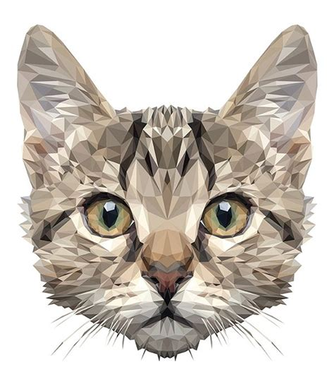 wallpaper poly cat low poly cat digital art mr curiosity by indyvisual