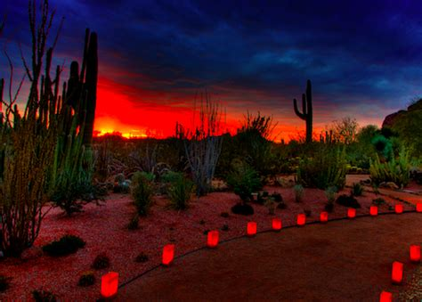home christmas lights scottsdale arizona desert mountain residents enjoy nearby flashlight tours desert mountain homes