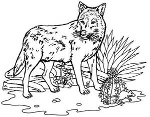 Galerry realistic nature coloring pages