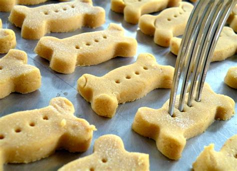 Handmade Biscuits Uk - 15 diy treats to per your pooch